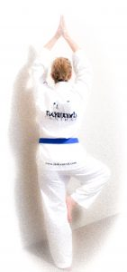 Practising yoga tree pose for improved taekwondo kicks